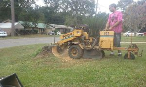 Stump Grinding by R & R Services